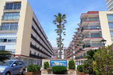 Apartamento en Peñiscola - Les Doyes 2/4