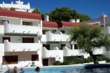 Studio in Alcocebre / Alcossebre - Studio with swimming pool in Alcoceber / Alcossebre