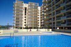 Apartment in Peñiscola - Apartamento Caleta II LEK