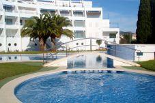 Appartement à Alcocebre / Alcossebre - Appartement avec piscine à250 mde la plage