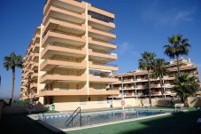 Appartement à Peñiscola - Apartamentos Alboran 4/6 LEK